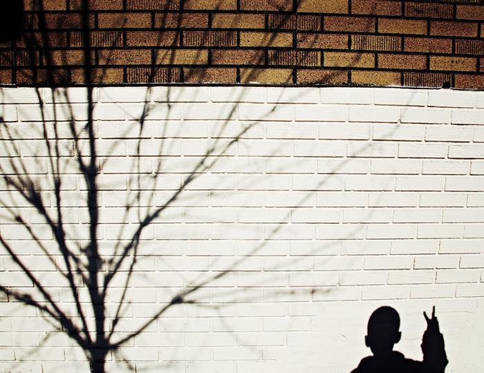 Scarlett-Hernandez_-shadow_lines