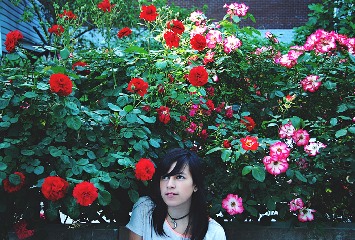 house-of-emery-_-rosebush
